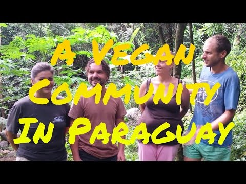 Vegan Community: Living in/with the nature (Paraguay)