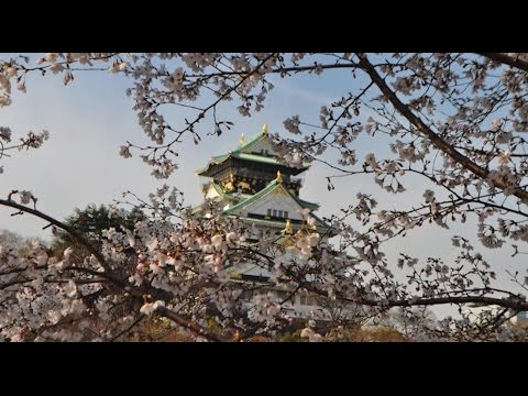 Top10 Recommended Hotels in Osaka, Japan