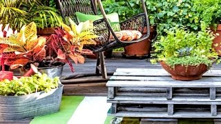 38 Creative Container Garden Ideas