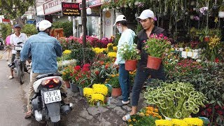 SÀI GÒN #141: Tấp nập hoa xuân trên đường Trường Chinh (Quận Tân Phú)
