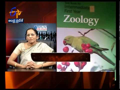 Yuva - Tips To Get Through Intermediate First Year Zoology Exam