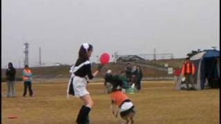 Repeat youtube video カルーアミルク ディスク フリースタイルショー!Flying Disc dog show!