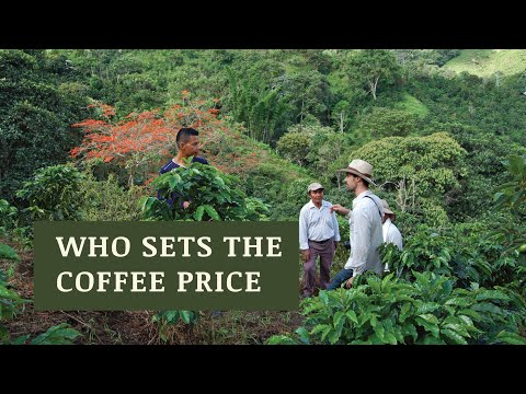 Supply, Demand, & The Price of Coffee