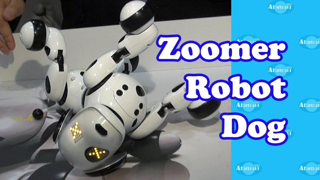 Zoomer Robot Dog New York Toy Fair Youtube