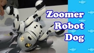 Zoomer Robot Dog New York Toy Fair