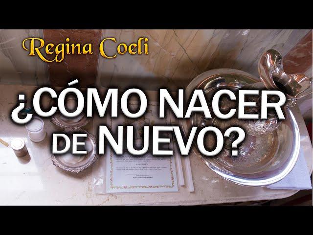 REGINA COELI. ¿CÓMO NACER de NUEVO?
