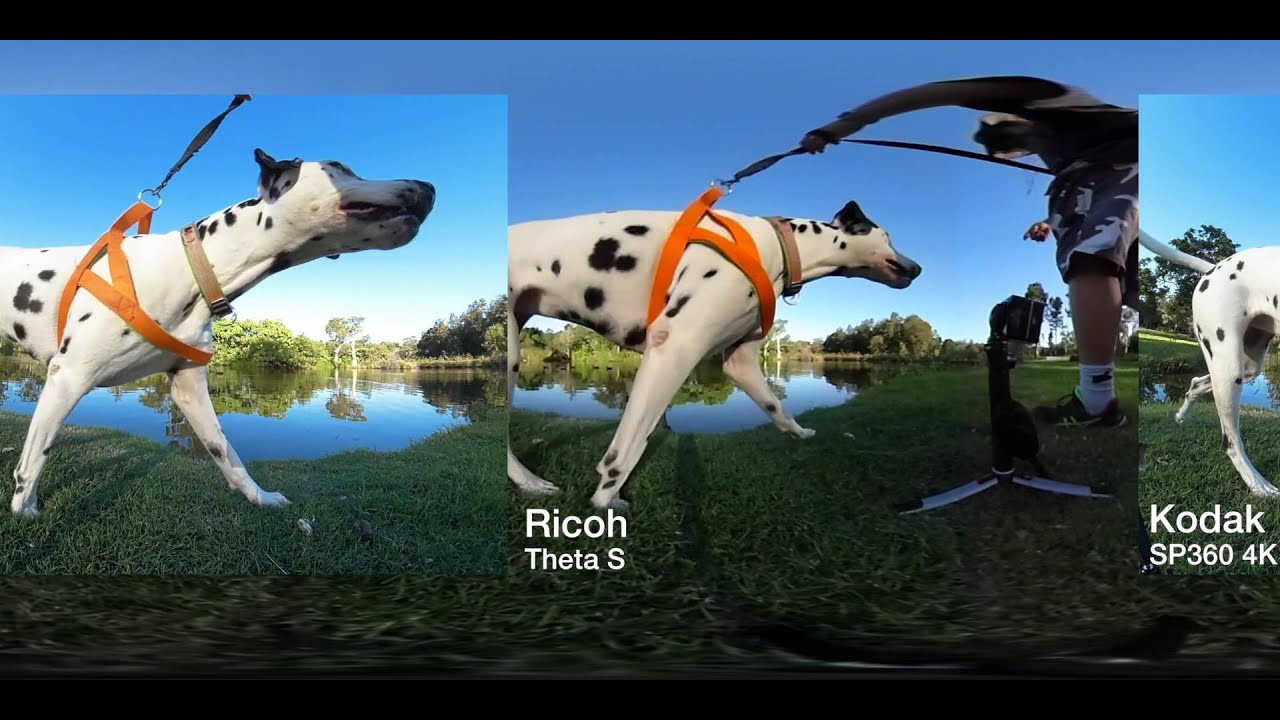 No question about it, our review of the ricoh theta s has been very different indeed - as befits a camera so unique as this one. Usually, we pair the analytical.