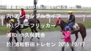 内)アンサンブルライフ 外)ジョーフリッカー 浦和野田トレセン 2015/1...