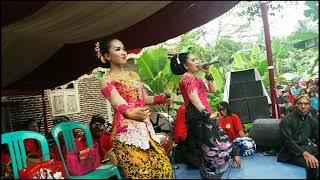 Padang Bulan Ing Pesisir Banyuwangi Tantri dan Tri Marlina Lengger Wahyu Turonggo Jati