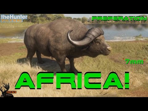 Getting Prepared for AFRICA with the 7MM Regent!! Call of the WILD THEHUNTER 2018