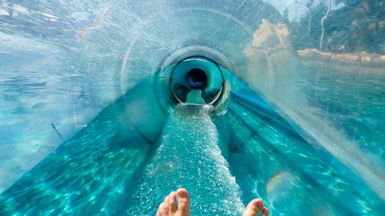 Aquatica Orlando - Dolphin Plunge   Water Slide Through Tank!