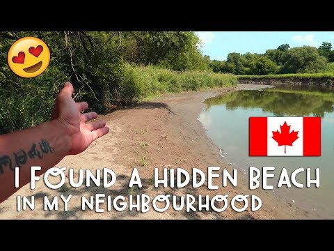 WOW! I Found a HIDDEN BEACH in my Toronto Neighborhood! | Vlog #189