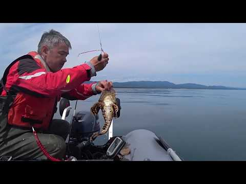 Рыбалка в Охотском море  БЫЧОК проткнул лодку.. Fishing