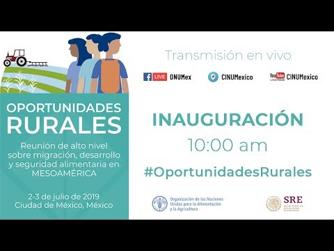 FAO: Reunión de Alto Nivel sobre Migración, Desarrollo y Seguridad Alimentaria en Mesoamérica (VIDEO)