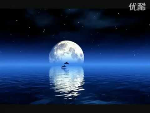 Bandari-Moonlight