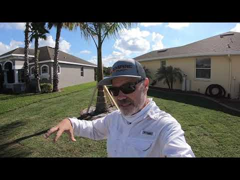 Empire Zoysia | Lawn Care Nut Zoysia Lawn Part 1