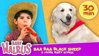 Baa Baa Black Sheep + More Baby Songs and Videos | Zouzounia TV
