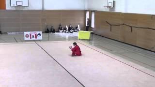 Deutsche Meisterschaft Wushu 2013 Düsseldorf-Heinrich Wolf CQ 7,78