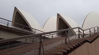 Ngắm cầu và nhà hát Opera House Sydney
