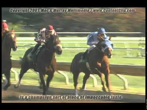 Kentucky Horse Farms and Racing