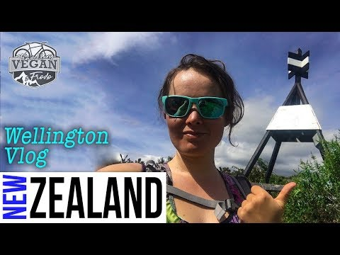 Wellington VLOG, Mt Victoria, Cannon Point, Upper Hutt