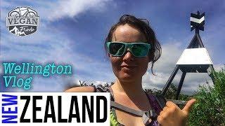 Wellington VLOG, Mt Victoria, Cannon Point, Upper Hutt