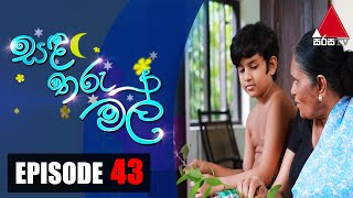 සඳ තරු මල් | Sanda Tharu Mal | Episode 43 | Sirasa TV Thumbnail