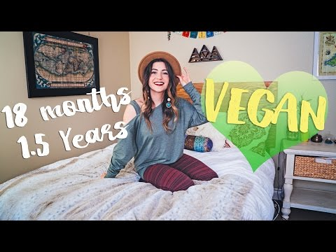 18 months (1.5 years) VEGAN | Update + How I Changed