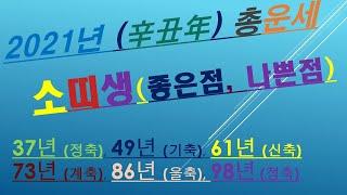 소띠,2021년총운세.사업운,금전운,건강운,애정운,  010/4258/8864