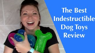 My Indestructible Tough Squeaky Dog Toys For Chewers Review *Pitbull Tested*