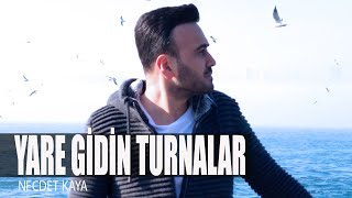 necdet-kaya-yare-gidin-turnalar-official-video