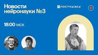Новости нейронауки 3 с Вячеславом Дубыниным нейроимпланты на 3D принтере восстановление нейронов