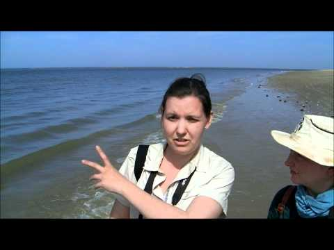 West Africa 2012 Video Diary 3 - Sine-Saloum Delta