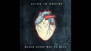 Alice in Chains - Last of My Kind