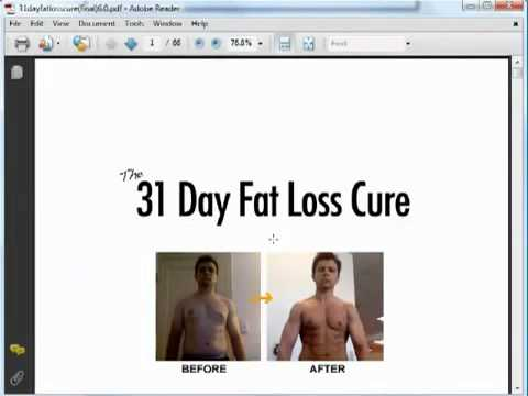 How do i make my cat lose weight image 8