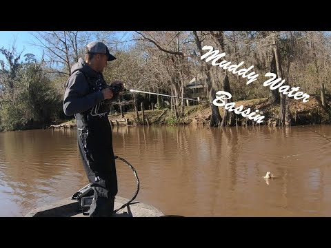 Louisiana Muddy Water Bass Fishing In January