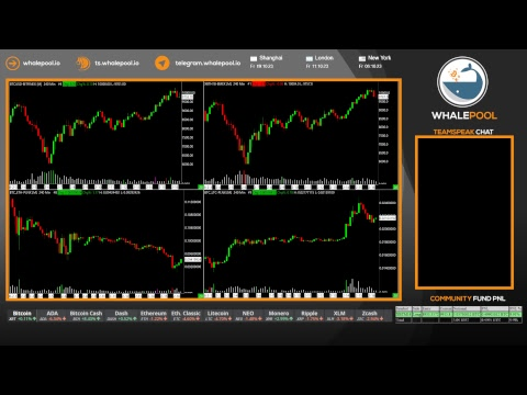 Whalepool: Bitcoin / Cryptocurrency Trading Live Stream 24/7/365