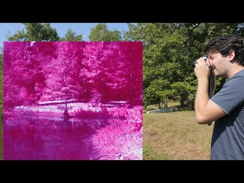 Color Infrared Film - Retro Camera Review - Ep. 23
