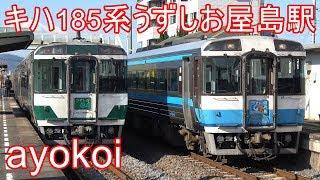 キハ185系特急うずしお 国鉄色&アンパンマンカー 屋島駅交換