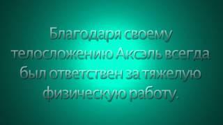 Power - Долота HELLER(, 2013-11-19T11:44:00.000Z)
