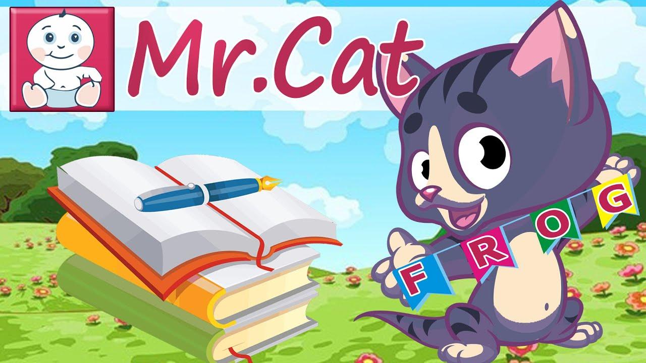 Как по-английски будет слово кот