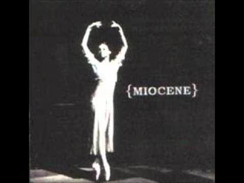 Miocene -   State Of Flux