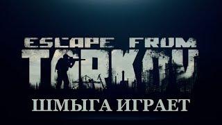 Побег из Тарков...