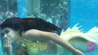 นางเงือก โชว์ในงาน ADEX Shenzhen Show ที่ประเทศจีน หางนางเงือกซิลิโคนเจ้าแรกของไทย