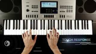 Casio CTK 6300IN Indian Electronic Music Keyboard CTK 6300