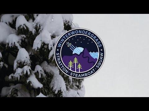 We Are WinterWonderGrass