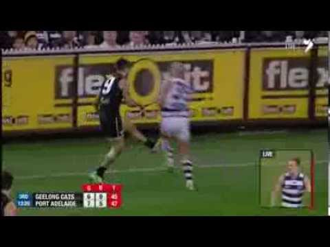 Paul Chapman reported in the semi-final - AFL