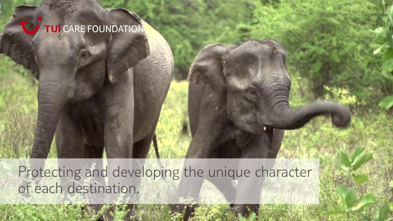 Introducing TUI Care Foundation