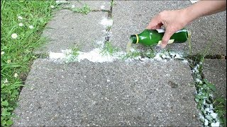 Bestes Hausmittel Gegen Unkraut ! - Best Home Remedy For Weeds !