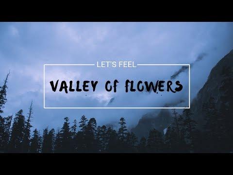 Lets Feel - Valley of Flowers & Hemkund Sahib Yatra   Joshimath   CINEMATIC FILM 2019